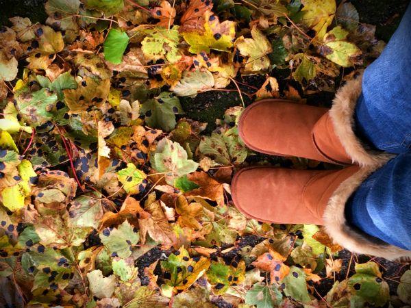 Autumn Equinox #autumnalequinox