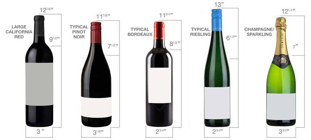 Edgestar 166 Bottle Built In Wine Cooler Cwr1661sz Bodegas De Vino Vino Italiano Refrigeradores De Bebidas