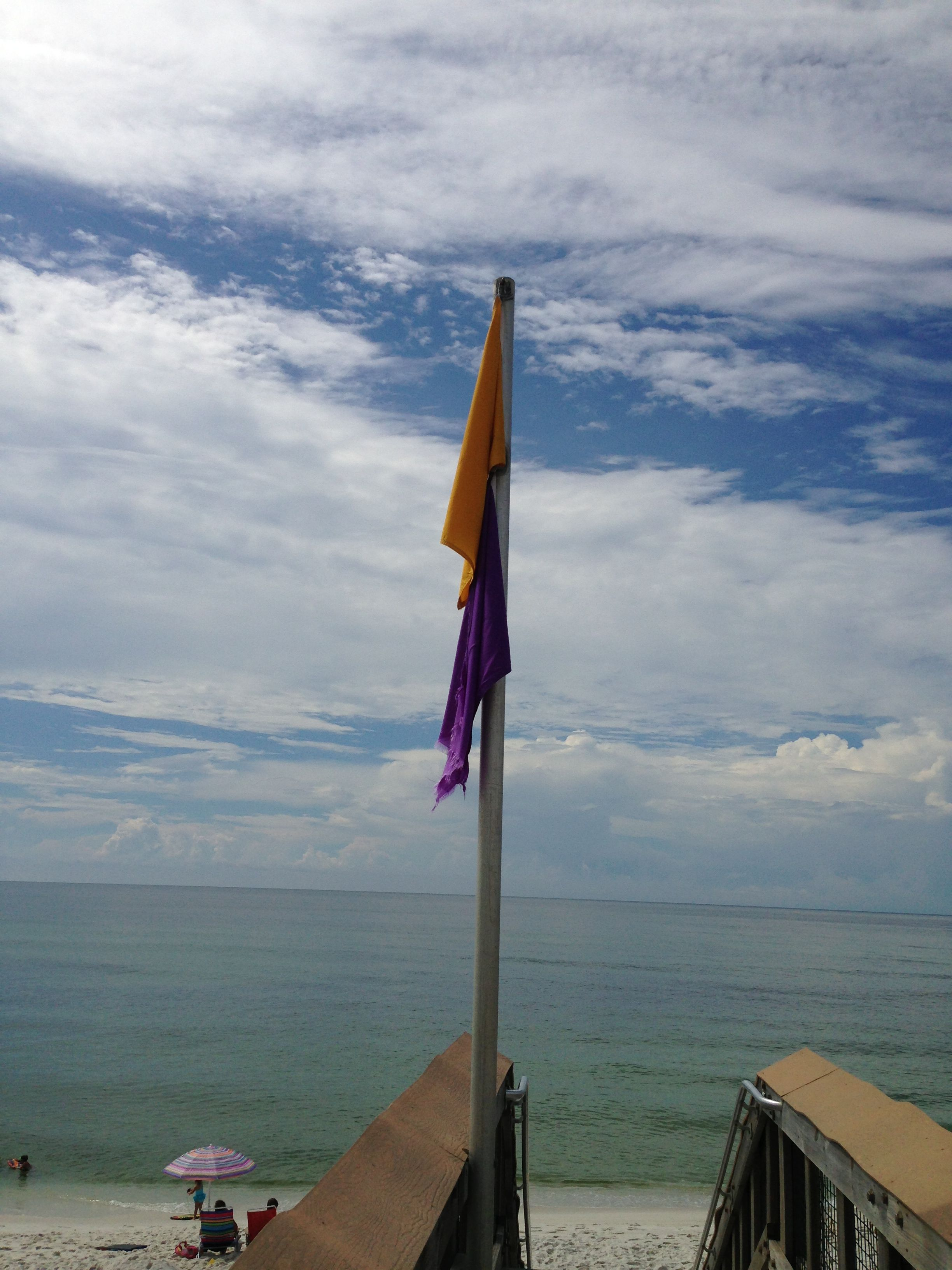 Purple Flag Because A Hammerhead Shark Was Spotted 5 Feet Off Shore Family Beach Vacation Beach Vacation Family Beach