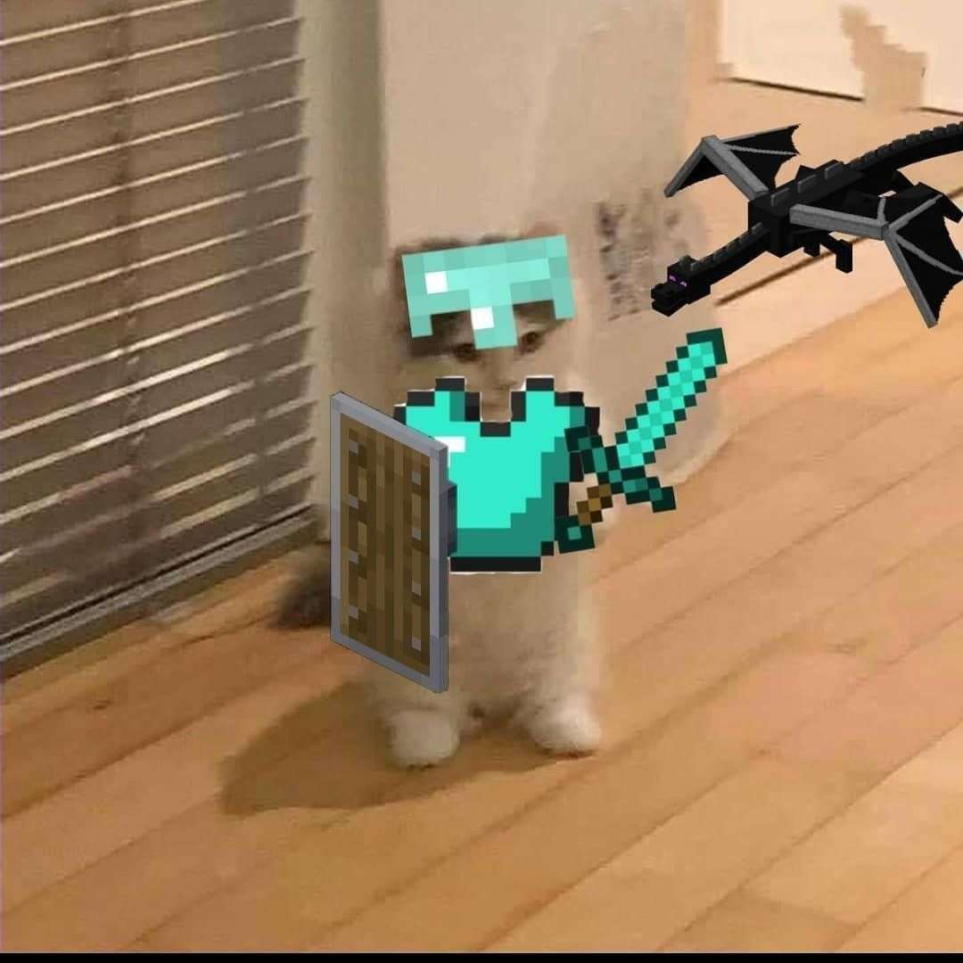 Minecraft boi