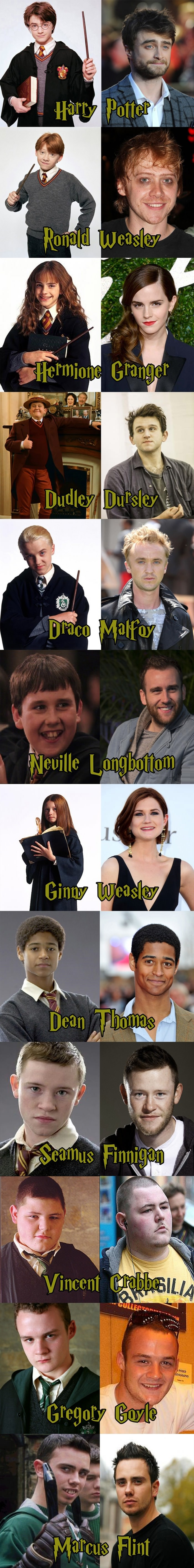 Harry Potter Evolution - part 1