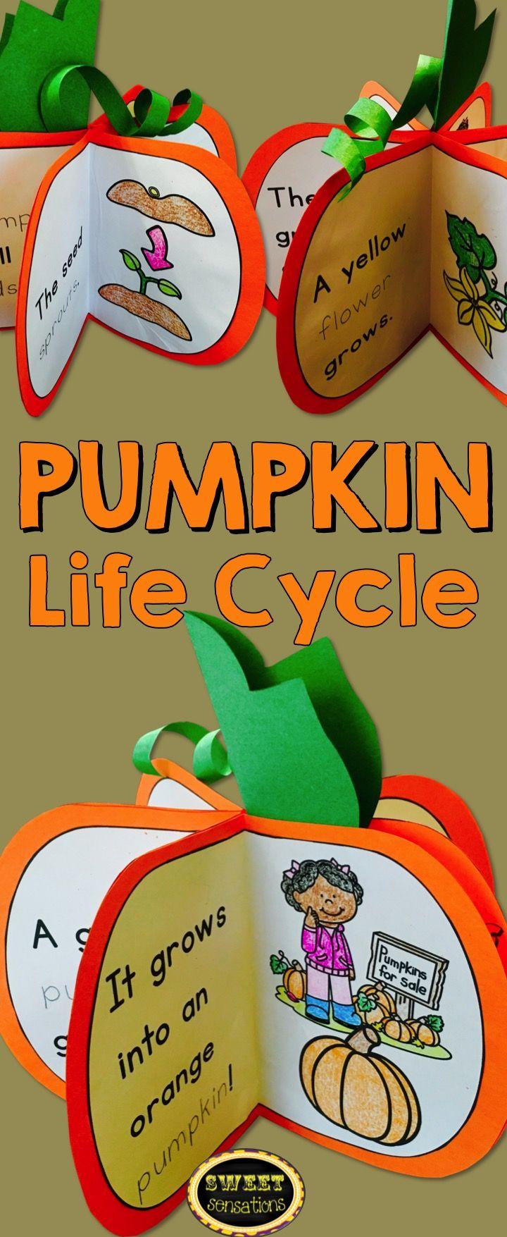 Pumpkin Life Cycle | Kindergarten, Englisch und Kürbis