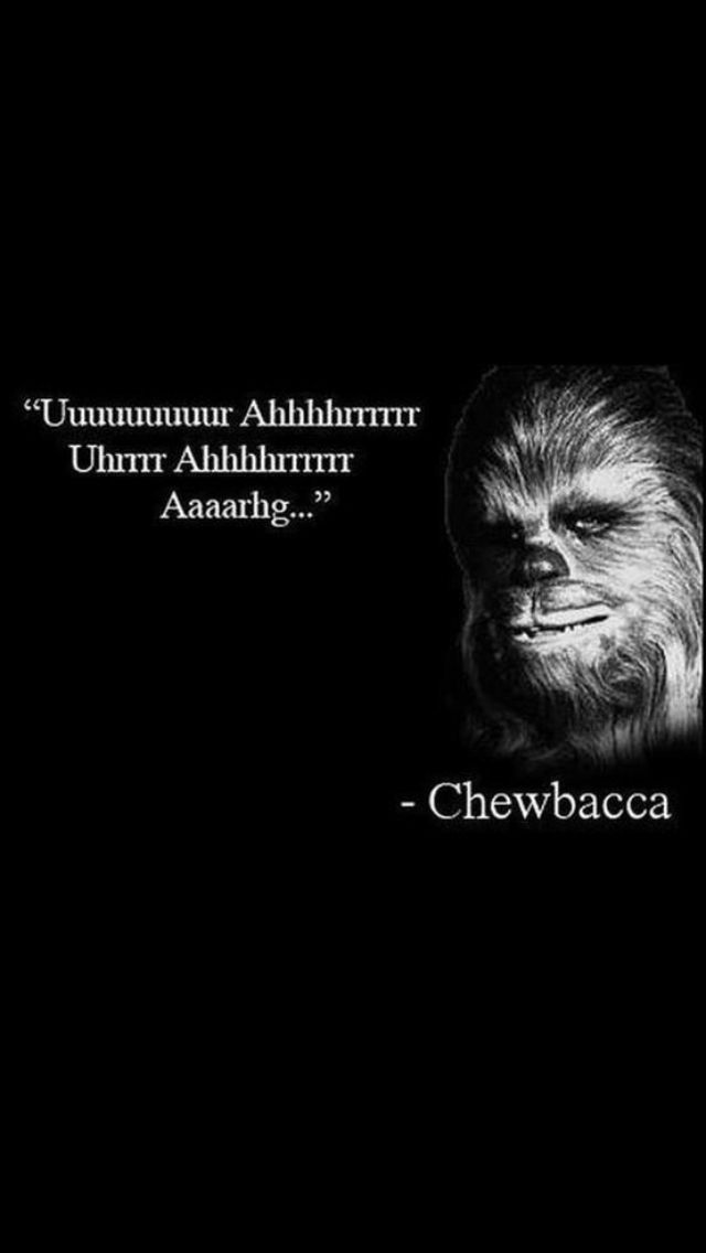 The wise chewbacca