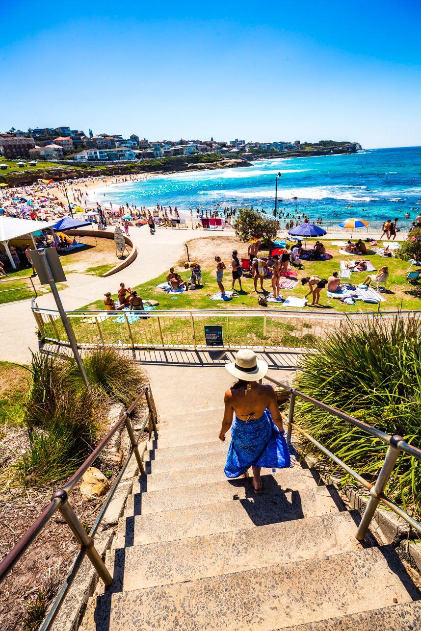 Bondi Beach Australia Surfing