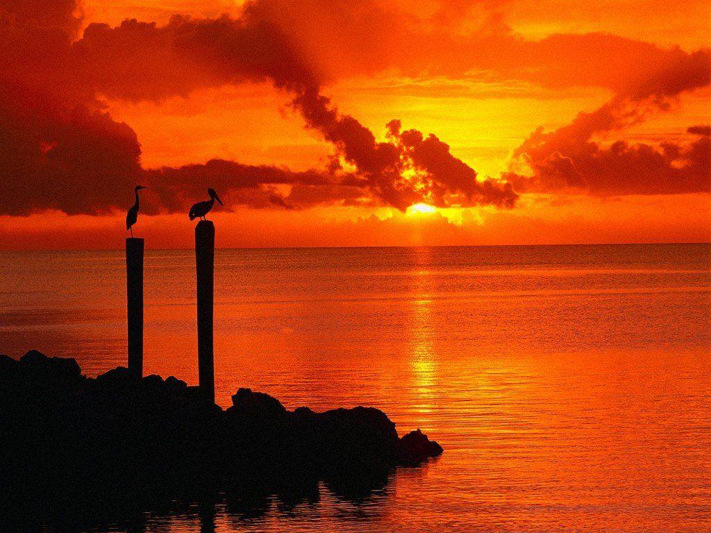 Florida Keys Wallpaper Beaches Great Landscapes Florida Keys Fullscreen Ways To Travel Florida Keys Florida