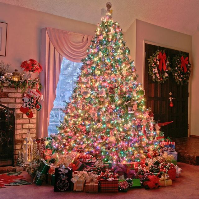 7 Types Of Christmas Trees And What They Say About