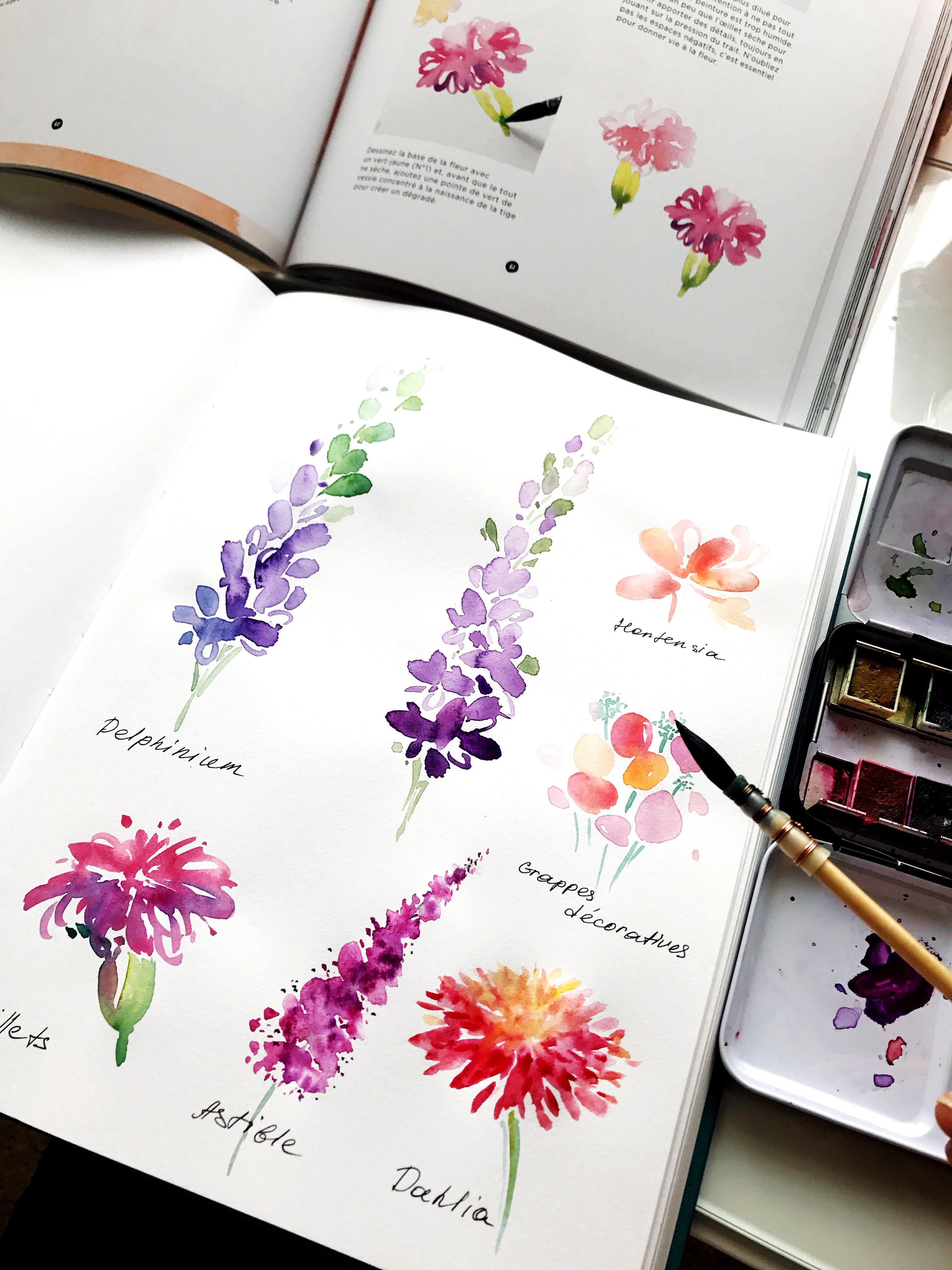 Different flower types | Watercolor, Painting, Handlettering, and