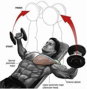 #beneficial #extremely #fitness #Gleitscheiben #gleitscheiben fitness #GymGuidercom #beneficial #ext...