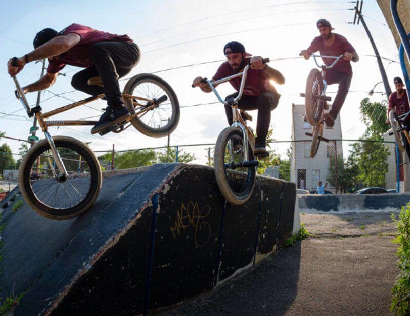 Top 6 Best Bmx Bikes Reviews 2020 Best Bmx Bmx Bikes Bmx