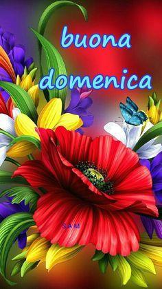 Buongiorno E Felice Domenica Foto Particolari Buona