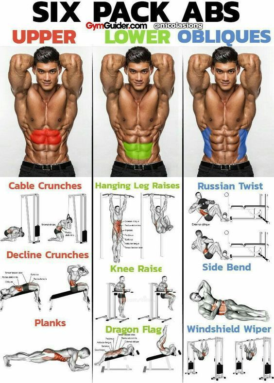 #components #workouts #programs #physical #fitness #best #the #ofThe Best Workouts Programs: 5 Compo...