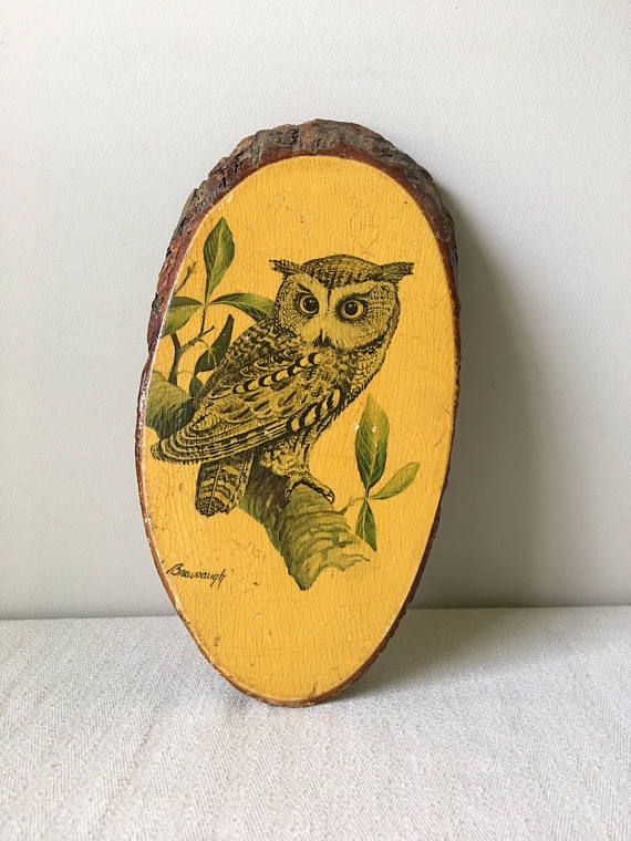 Attractive Vintage Owl Wall Decor Mold - Wall Painting Ideas ...