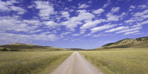 Photograph-USA, South Dakota, Wind Cave National Park, dirt road across grassland-10
