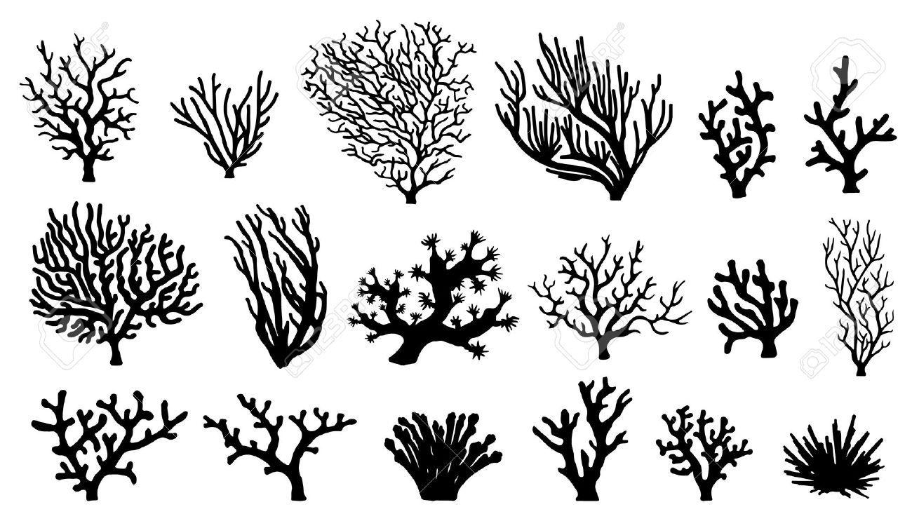 Silhouettes De Corail Sur Le Fond Blanc Tatouage Corail Les Arts Dessin De Plage