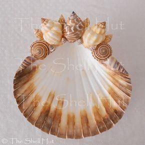 Seashell Soap Dish Jewelry Holder Beach House Decor By Shellhut
