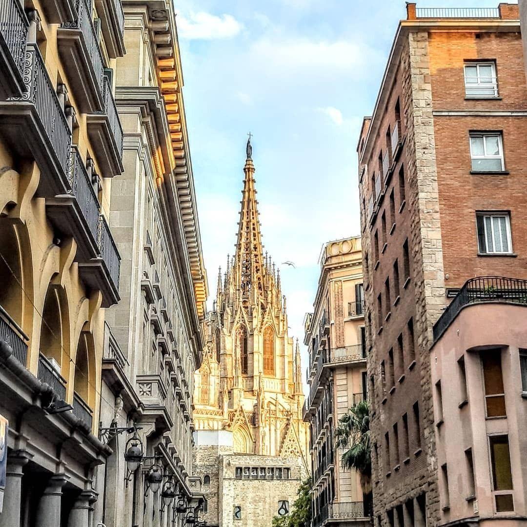Son Más De 250 Gárgolas Las Que Puedes Encontrar En La Parte Alta De La Catedral Descubrirás Animales Mitológicos De T Barcelona Catedral Animales Mitológicos