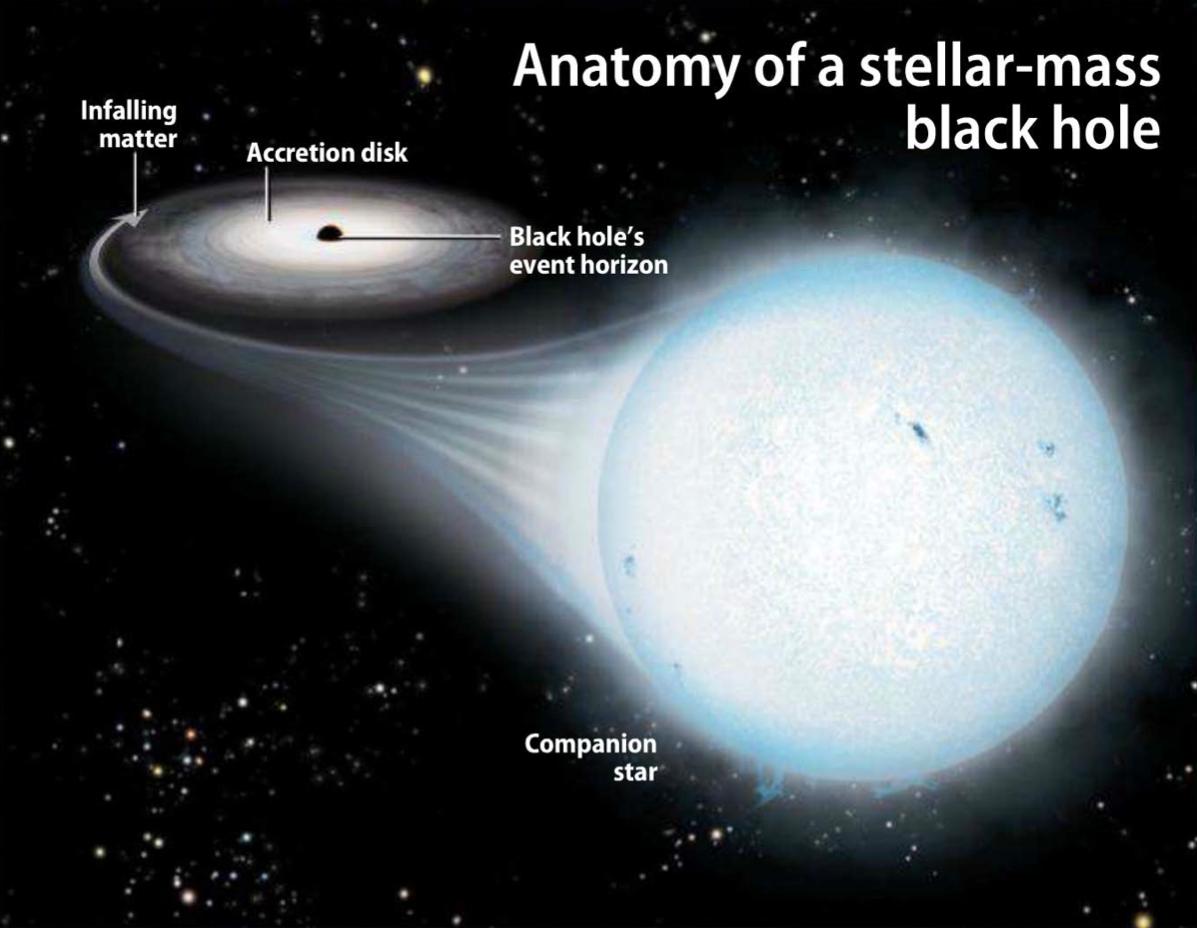 Anatomy of a stellar mass black hole [Source: Astronomy/Roen Kelly ...