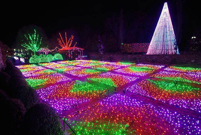 Captivating NC Arboretum Winter Lights Asheville Nice Ideas