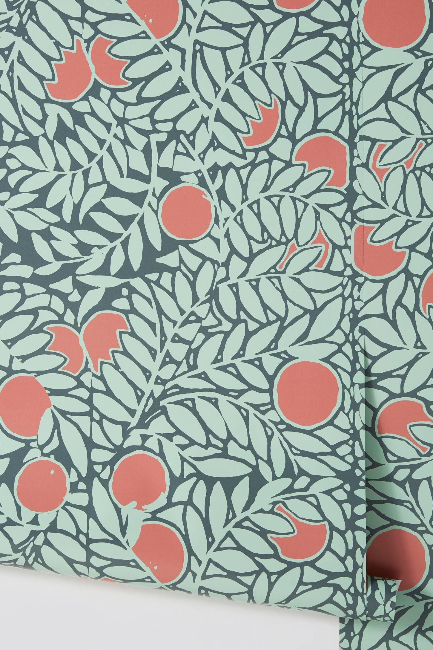 Orange Grove Wallpaper Orange grove, Wallpaper, Orange walls