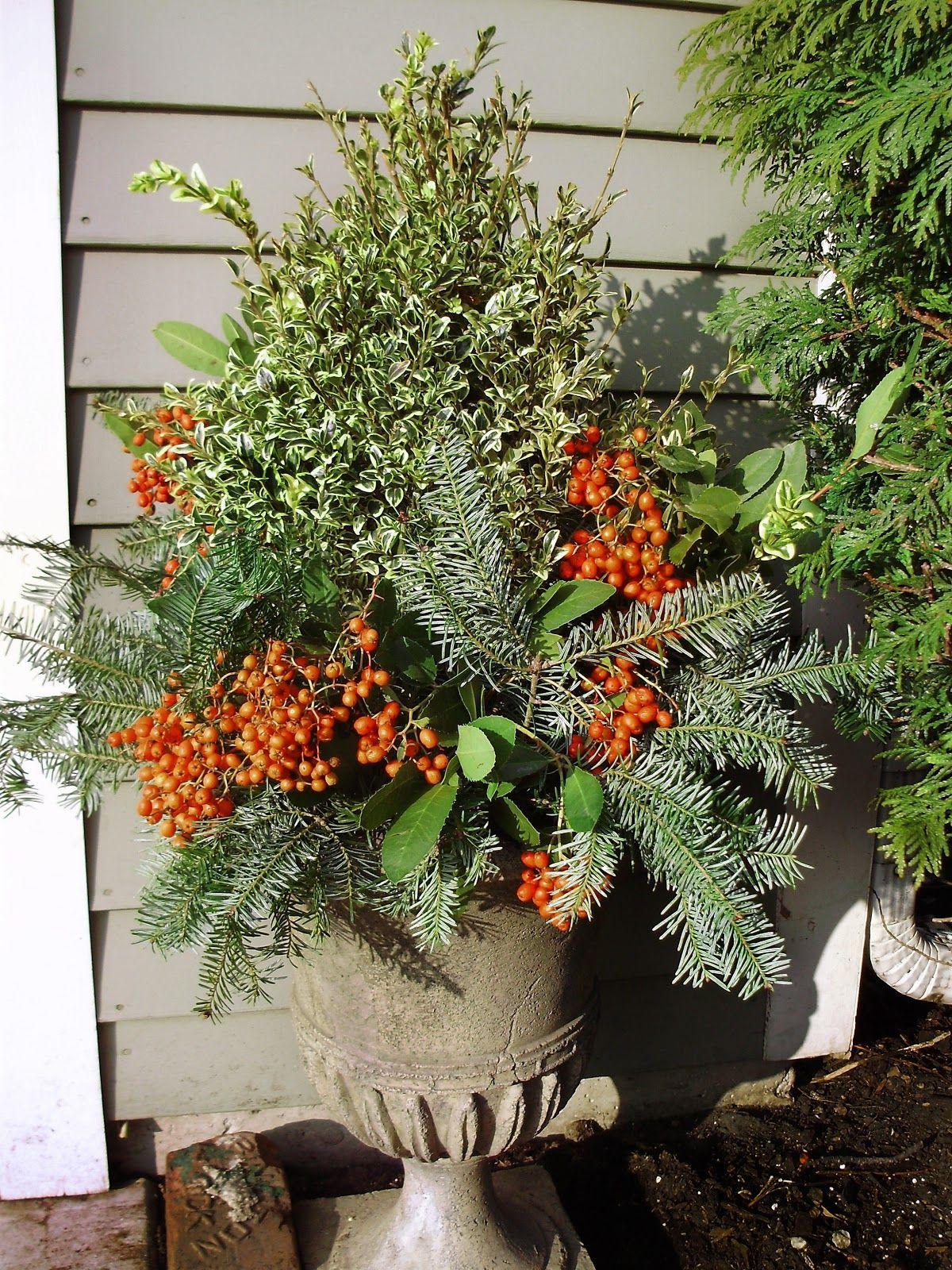 Where To Get The Best Deals On Landscape Supplies | Home & Garden ...