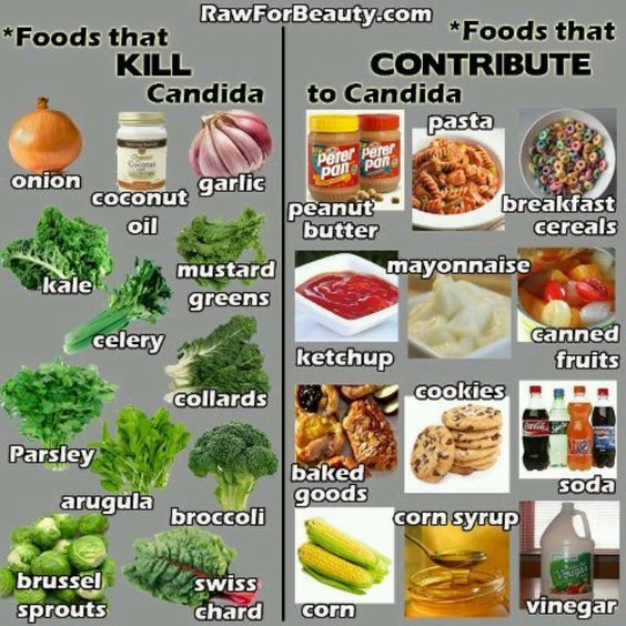 Foods that Kill Candida and Foods that Contribute to Candida! #LighthouseHealth www.LighthouseHealth.com [The foods on the right were my old diet (they gave me high cholesterol, too); the foods on the left now make up my new diet. Hoping to feel better ve