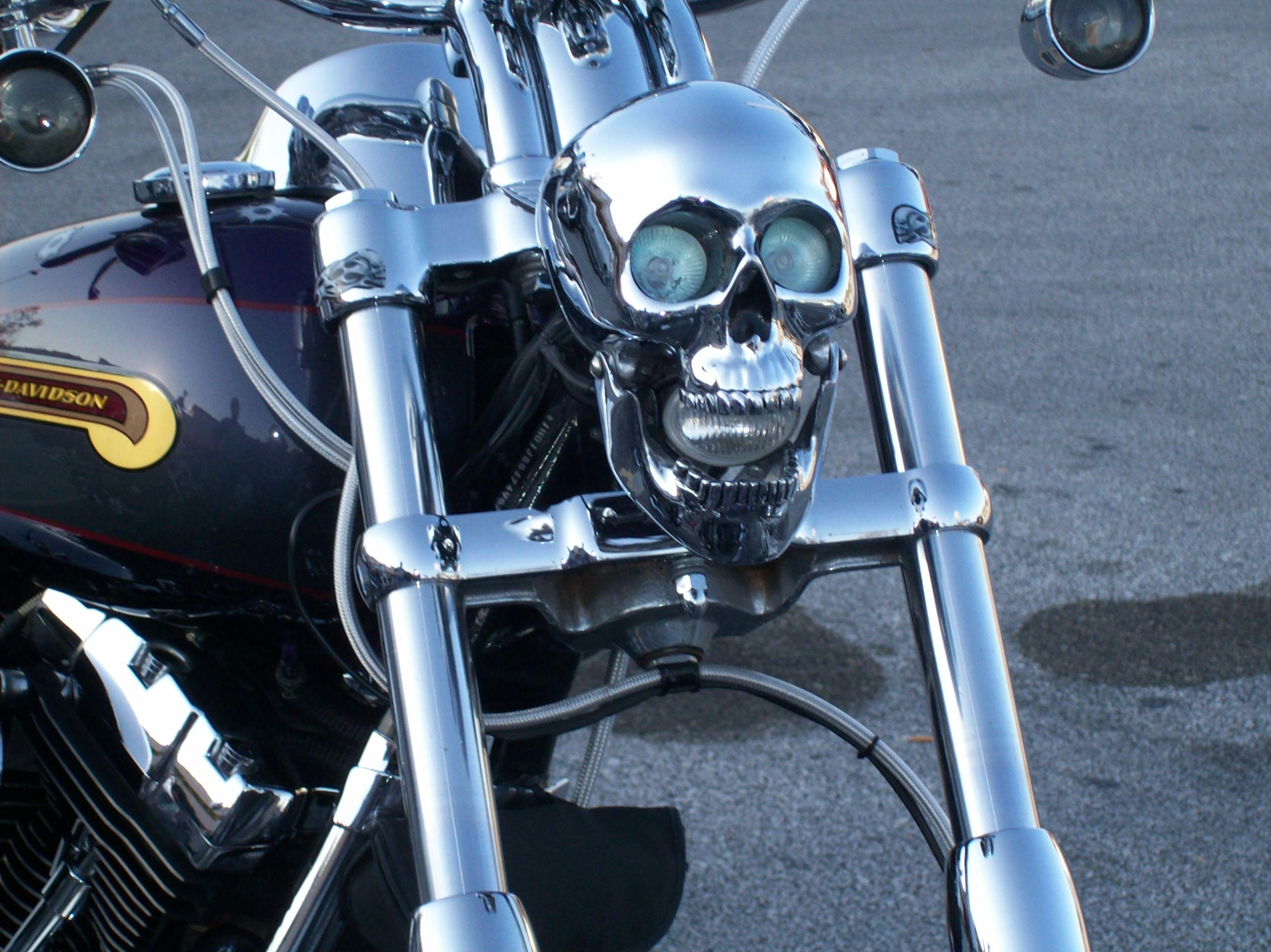 Skulls harley davidson ass — pic 8