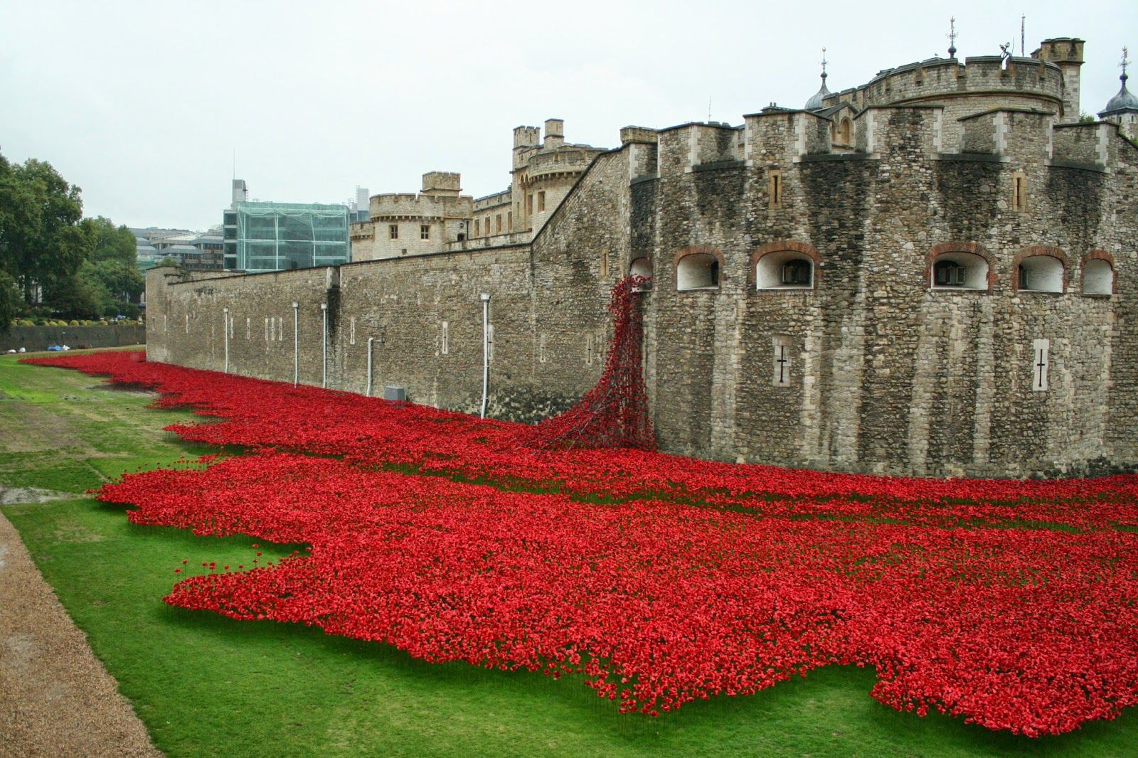 Tower Of London Poppies Poppies Transform Tower Of Londons Moat - Tower of london river of poppies