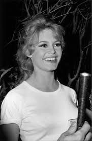 Image result for brigitte bardot on the beach