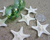 """White Starfish Beach Decor -  Nautical Decor Knobby Starfish for Beach Weddings - 3pc, 1-1.5"""" White"""
