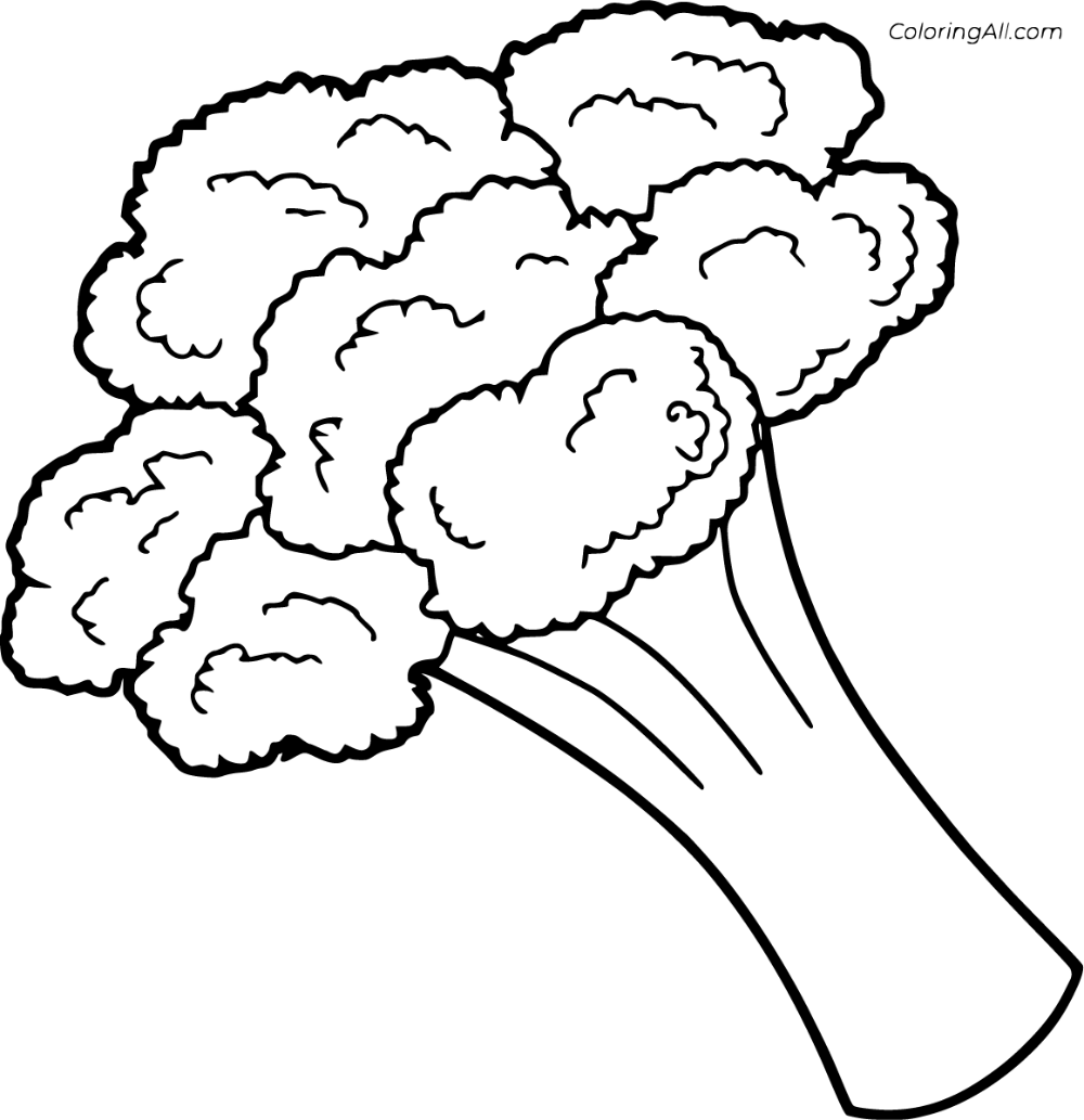 9 Free Printable Broccoli Coloring Pages In Vector Format Easy To Print From Any Device Fruit Coloring Pages Vegetable Coloring Pages Coloring Pages For Kids