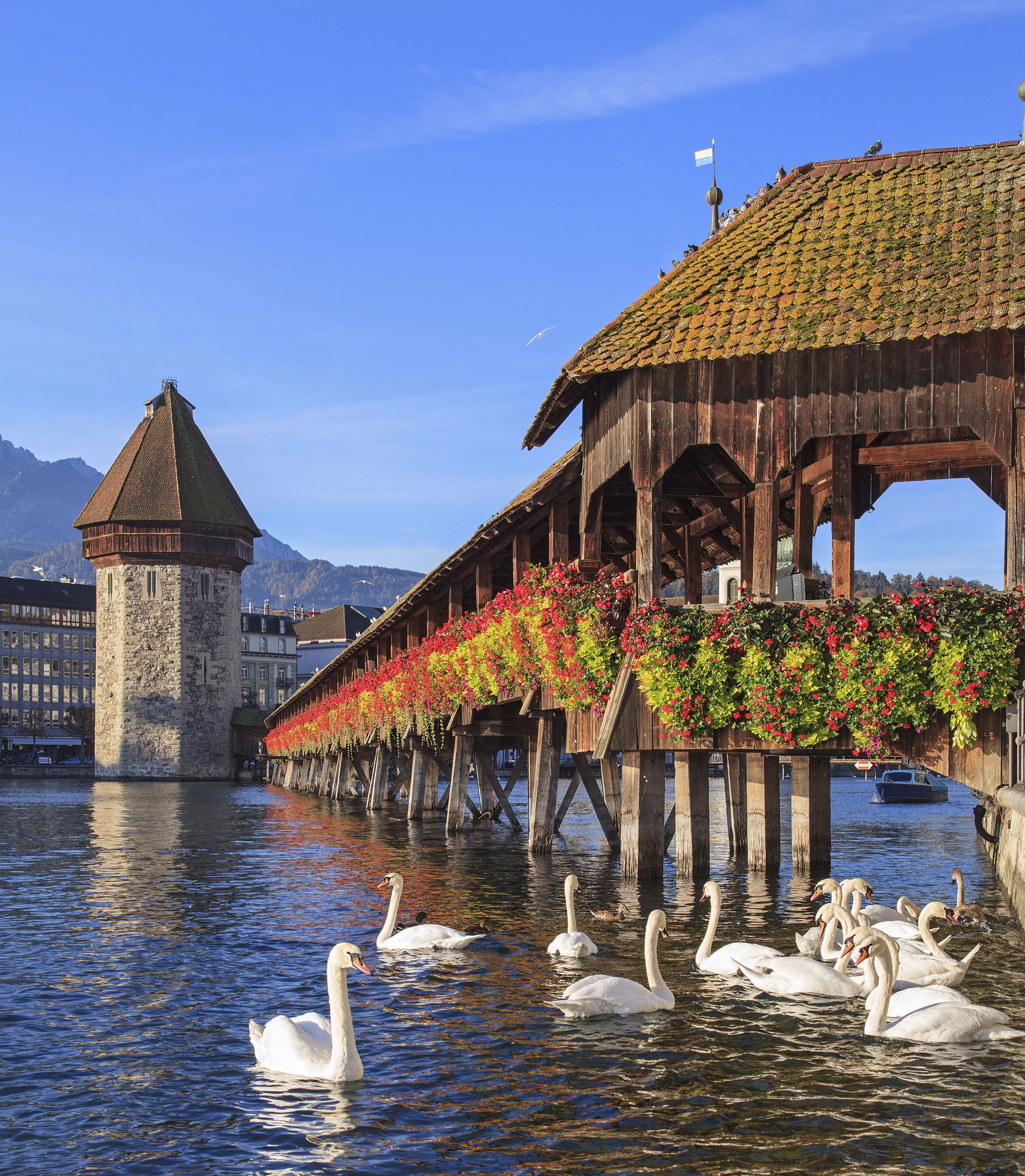Chapel Bridge Lucerne   Built In 1333, This Is A Wooden Bridge Which  Crosses The Reuss River. It Is The Oldest Wooden Covered Bridge In Europe.