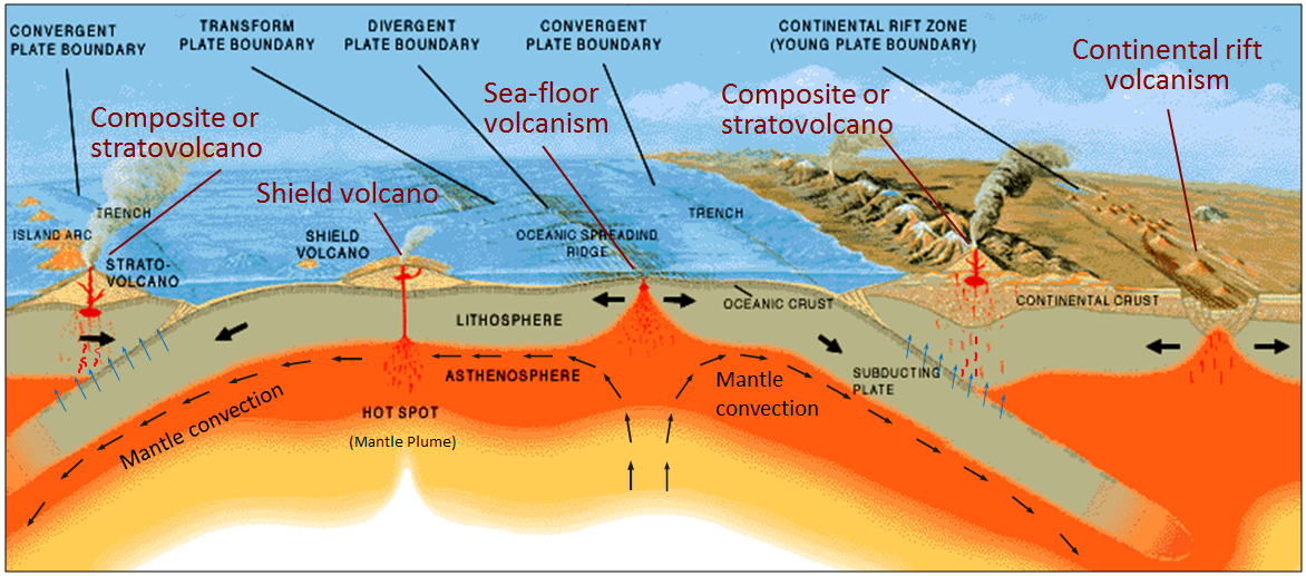 The earth s crust is divided into several major plates