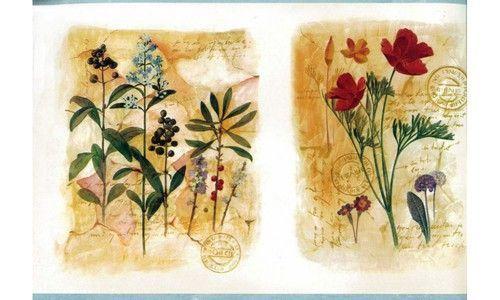 Framed Gardened Plants KBE12581 Wallpaper Border