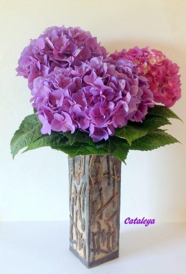 Image - Hortensias - El Blog de Cataleya - Arte Floral - Skyrock.com