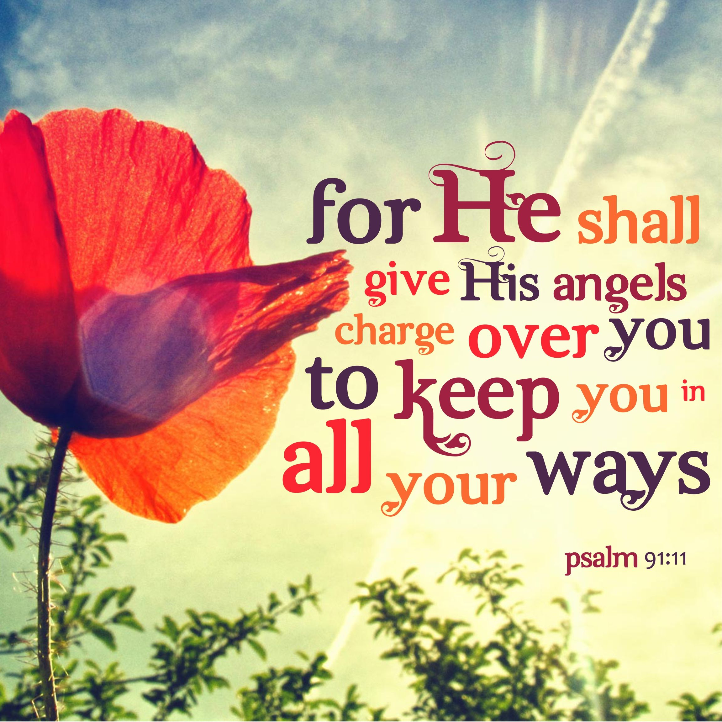 Image result for psalm 91:11-13