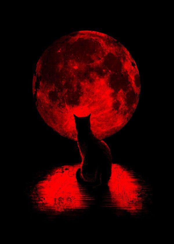 magic red full moon 2019 - photo #9