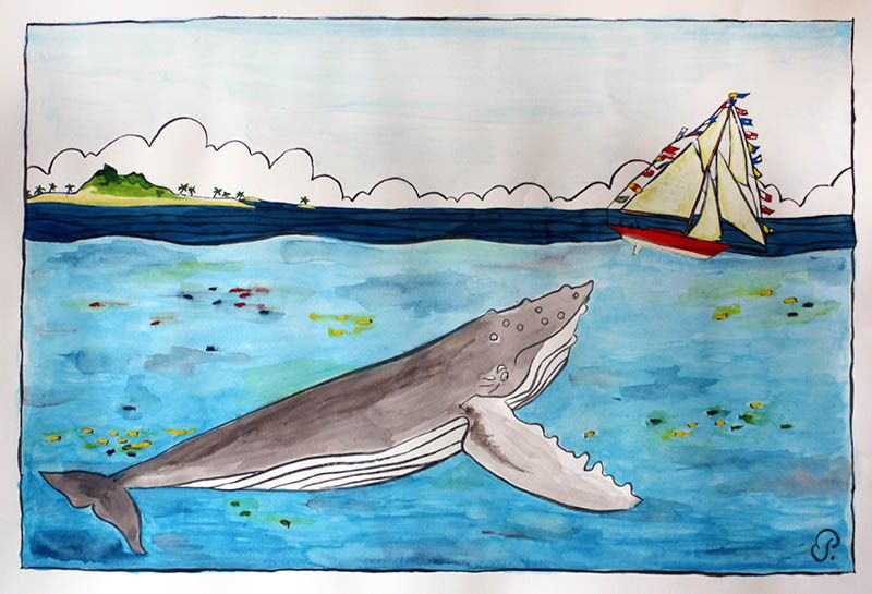 Tahiti Tahiti Illustration Et Drawing