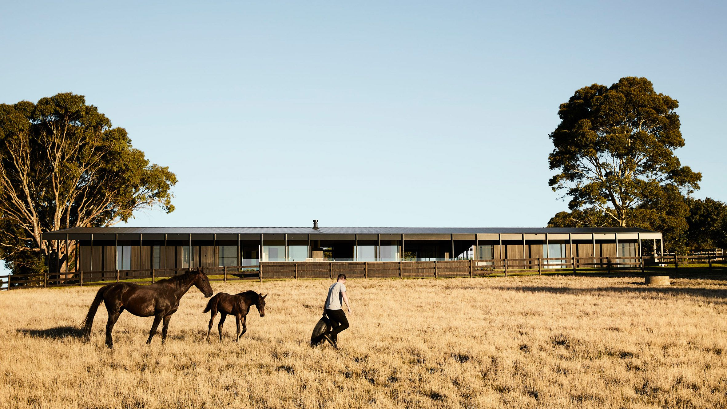 This low lying house on the mornington peninsula near melbourne features blackened timber facades that reference the vernacular style of local farmhouses