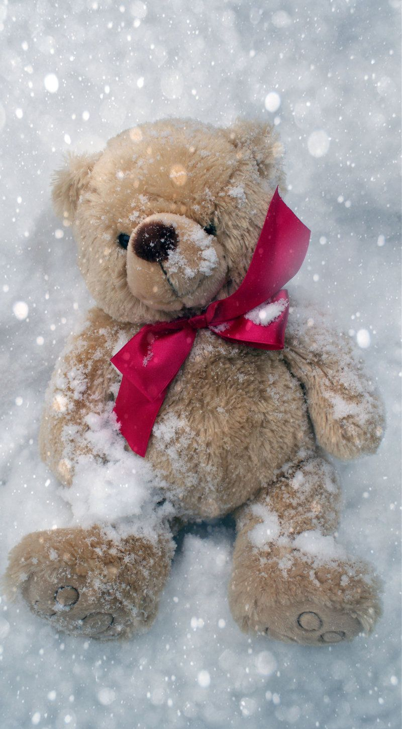 Image result for teddy bear in snow