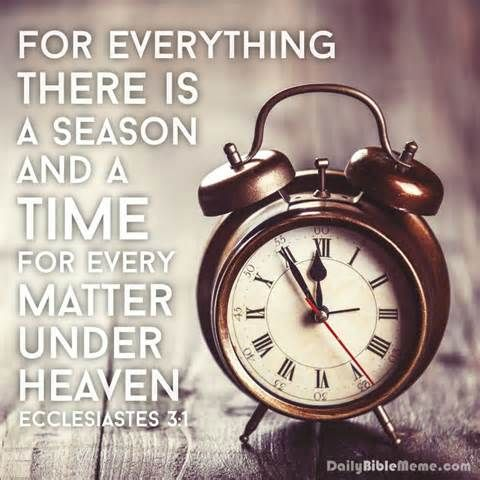 ecclesiastes 3:1 meme - Bing images | Daily bible ...