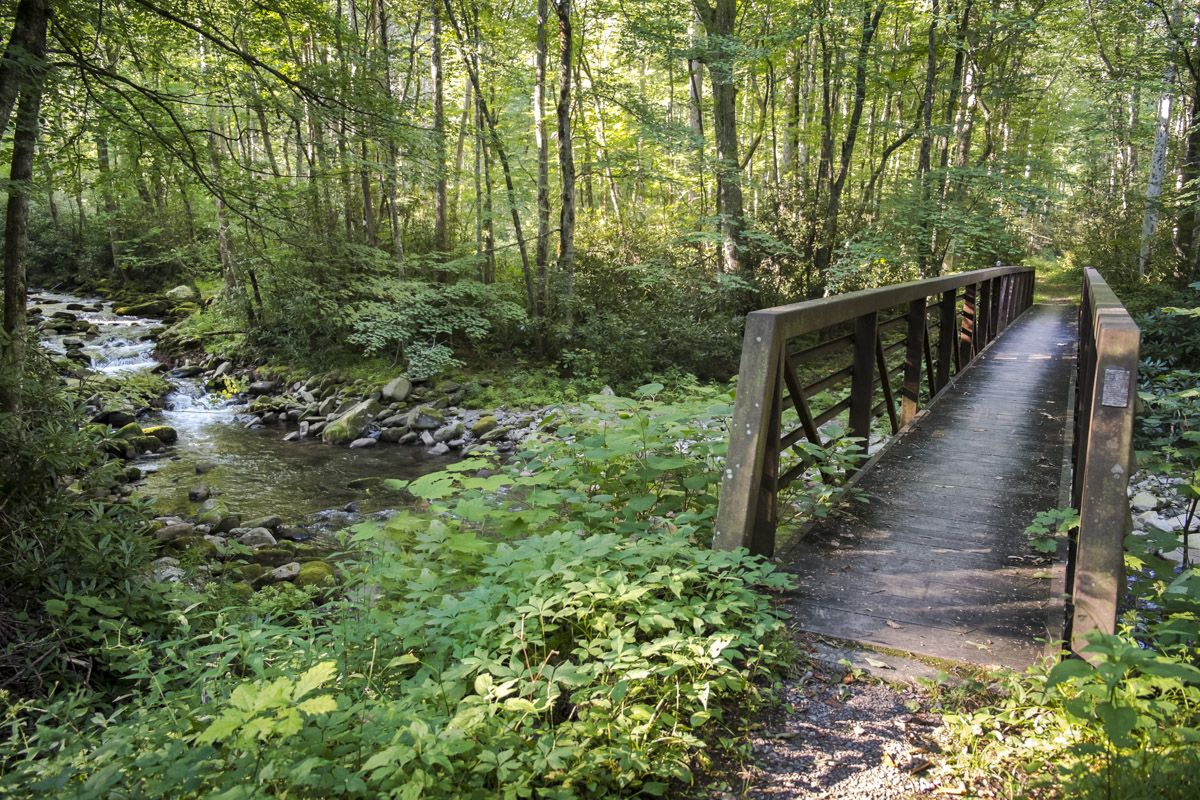 goshen-gate-bridge-goshen-prong-trail-gsmnp-august-02-2015.jpg (1200×800)