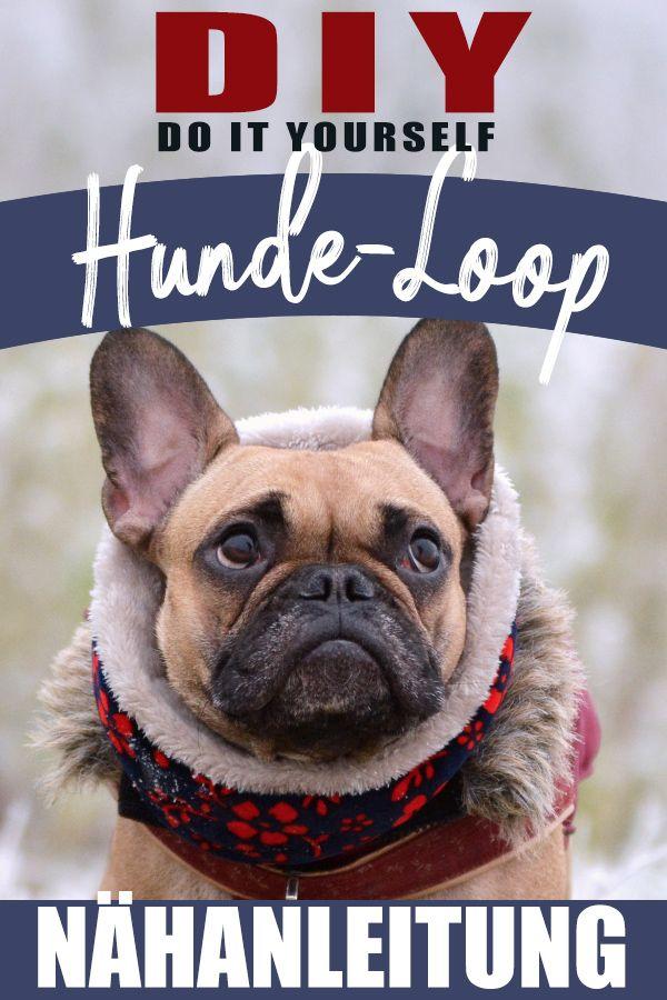 Anleitung: Loop-Schal für Hunde selbst nähen   Für Hunde: Zubehör ...