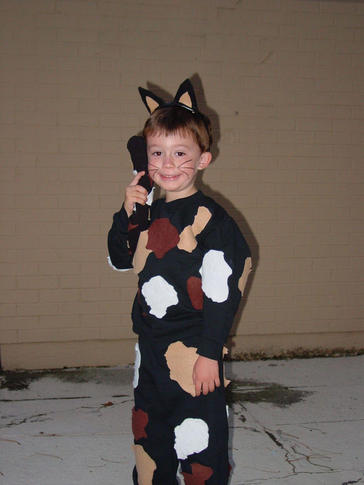 Child\u0027s DIY Calico Cat Costume