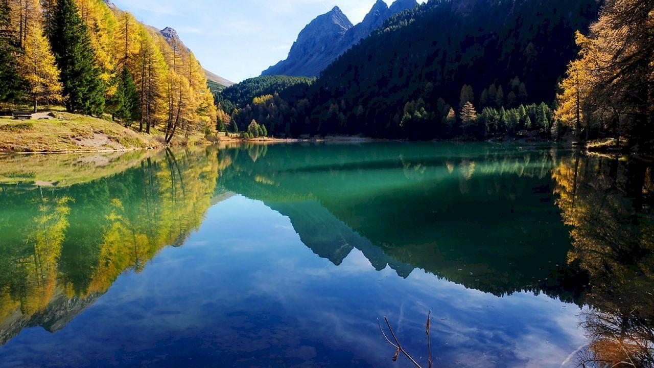 ما هي اللغة الرسمية في سويسرا Honeymoon Tour Travel Marketing Solo Travel