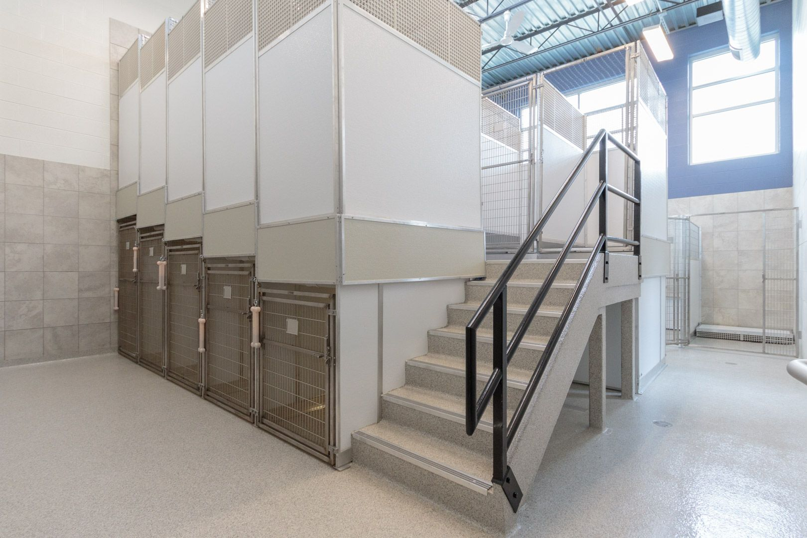 Coyne Veterinary Center One Of Our Dog Boarding Rooms With Mason Company Double Deck System Kennels Hospital Design Building Design Veterinary