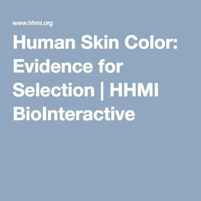 Human Skin Color Evidence For Selection Hhmi Biointeractive