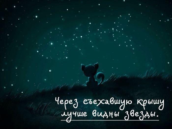Через съехавшую крышу лучше видны звезды | Волшебные цитаты, Милые цитаты, Юморные цитаты