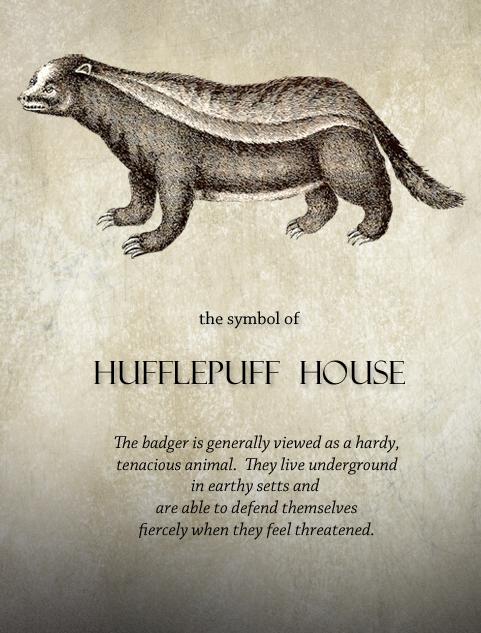 6c183aa0 House Symbols Hufflepuff House: The Badger | Harry Potter ...