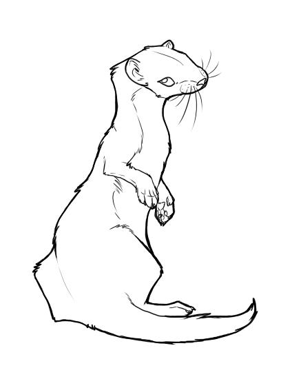 Weasel Lineart Art Programs Art Free Art