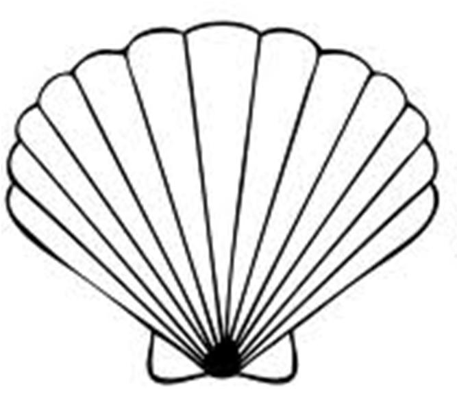 seashell clipart alison pinterest clip art free free clipart rh pinterest com seashell clip art free seashell clip art black and white